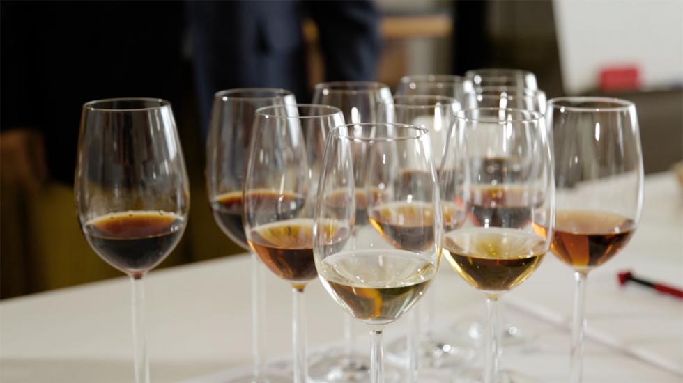 Sherryprovning i Jerez