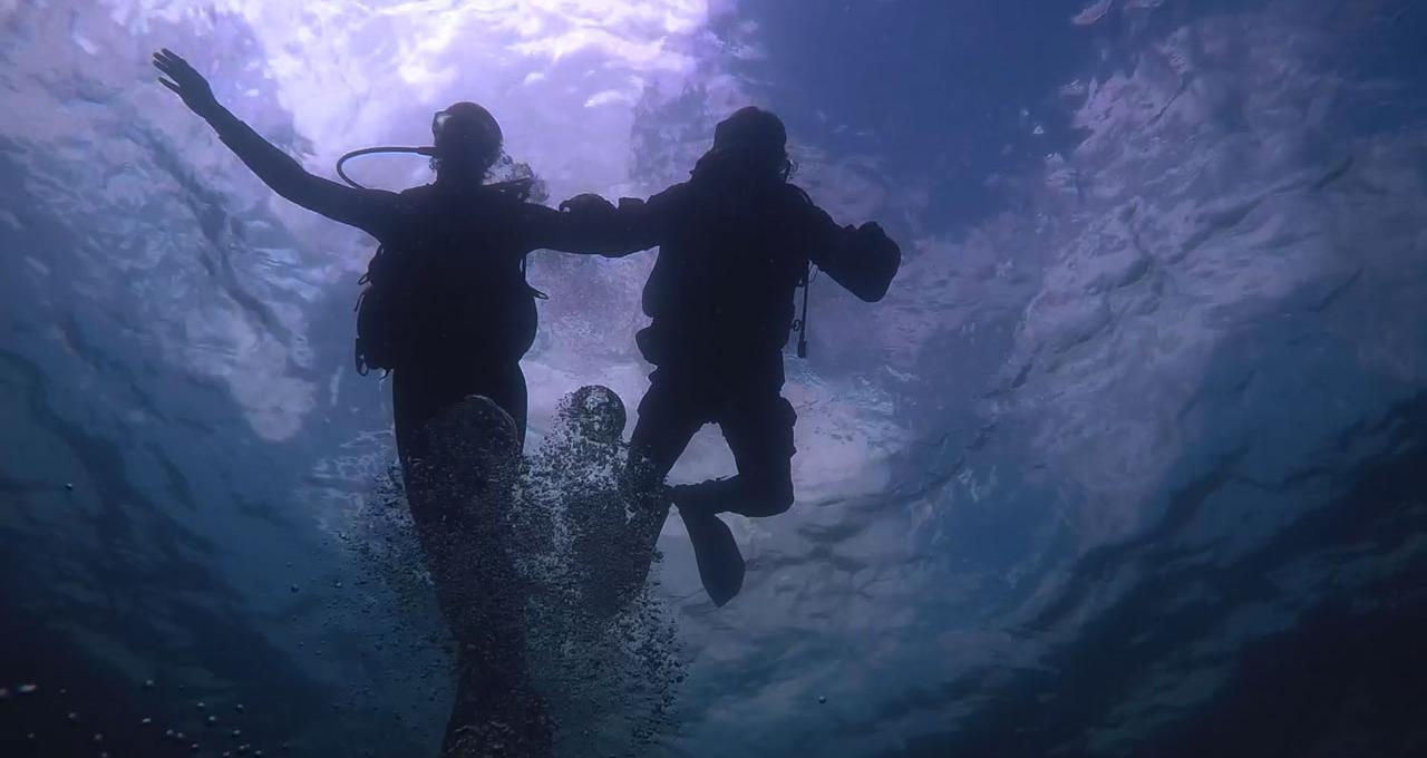 Prova på-dykning i Öresund