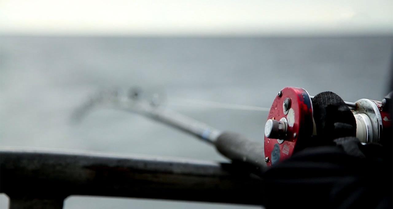 Havsfiske på Kattegatt
