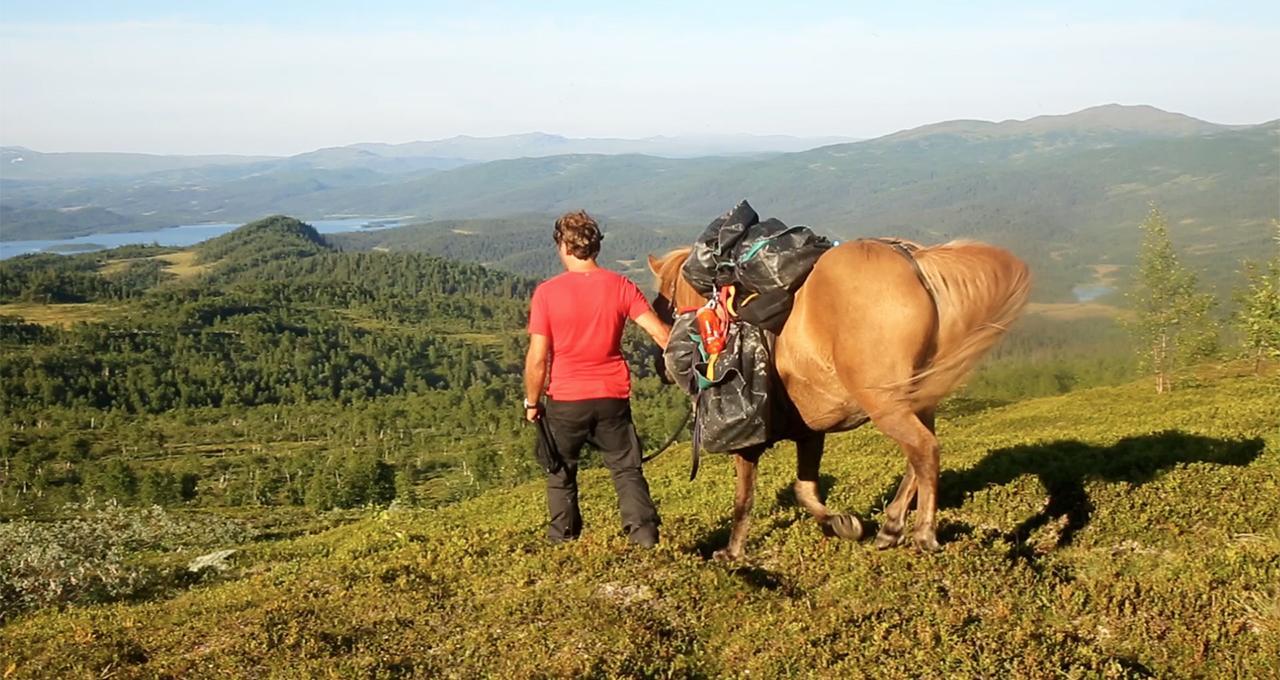 Vandra med häst i Jämtland