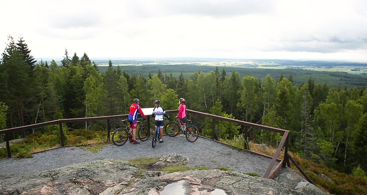 Mountainbike i Bergslagen