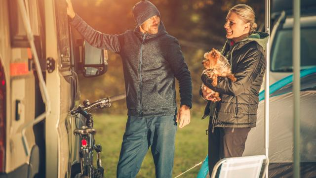 Scandinavian camper family with dog